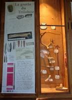 test_musee-vitrine-IV.A_grotte-trilobite_ballinger.jpg