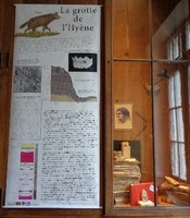 test_musee-vitrine-I.B_grotte-hyene_ballinger.jpg