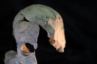 Crâne 1 · Artemyz, Claire · © Claire Artemyz