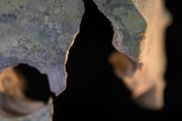 Crâne 2 · Artemyz, Claire · © Claire Artemyz