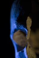 L'ancêtre · Artemyz, Claire · © Claire Artemyz
